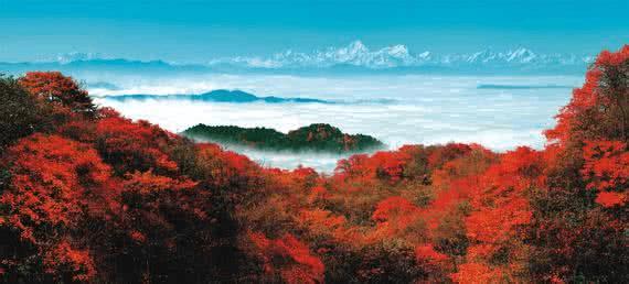 四川乐山来渝介绍旅游新看点
