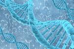 基因表达模式或可精准确定死者死亡时间