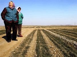 农村三块地改革试点今年大考 农地入市亩均百万元
