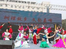"""""""树理故乡 文韵嘉峰""""旅游文化节沁水举行"""