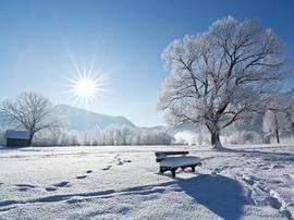 那个冬天的那个早晨