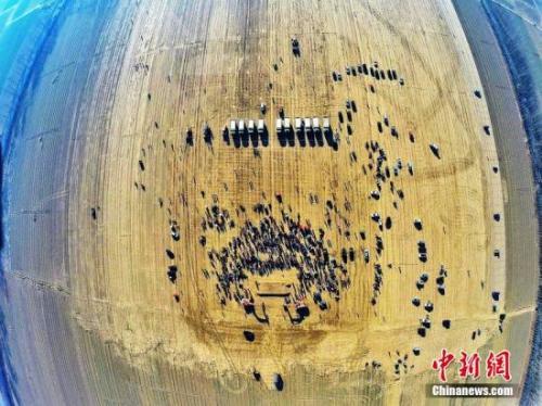 民航局副局长董志毅:京津冀机场将重新分工