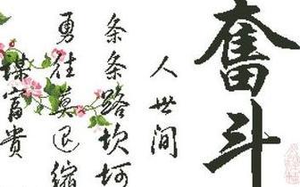 """我奋斗 我幸福——""""小燕子""""的""""鸿鹄志"""""""