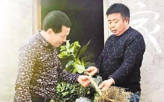 垫江永平镇鲜花村支部书记谭会昌  用做生意赚的钱帮村