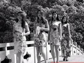 年满16岁女子妇女节当天穿上旗袍 可免费逛白云山