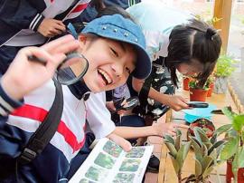 湖南出台研学旅行意见:公益、安全是主旋律