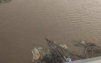 网传卫河水变浑浊的原因查明了!
