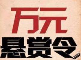 """悬赏通告发布仅2天 佛山""""消失""""10年老赖主动现身"""