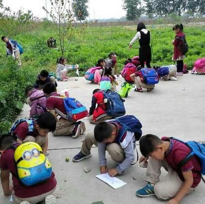 国际城小学研学课程展示回顾