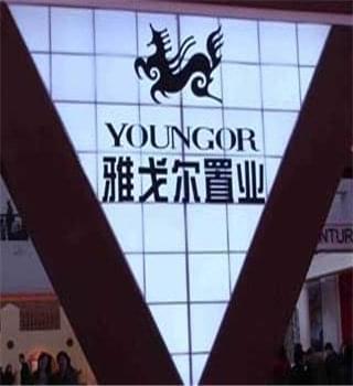 雅戈尔投资20亿元发展地产业务