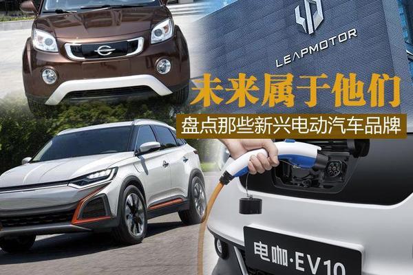 下一个特斯拉 盘点新兴电动汽车品牌