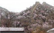 北京延庆大雪持续4小时
