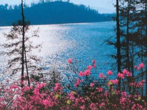 带你闯入《夜宴》绝色外景地 呼吸阿尔山最纯净的空气