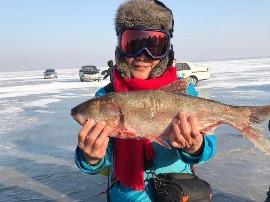 遇见东北:年年有鱼 查干湖活动纪实