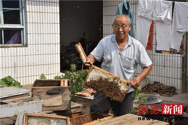 """代县""""养蜂大王""""带动70多贫困户养蜂酿蜜致富"""