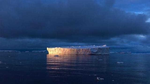 气候变暖南极生态变样 企鹅被迫找新家
