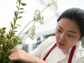 长春举行花艺技能大赛成绩优异可获创业资金