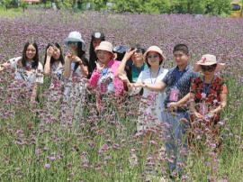 中华孝道园与花世界集团携手打造我国最专业花卉特色小