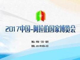 2017中国——阿拉伯国家博览会开幕式