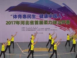视频:2017年河北省首届柔力球公开赛启幕