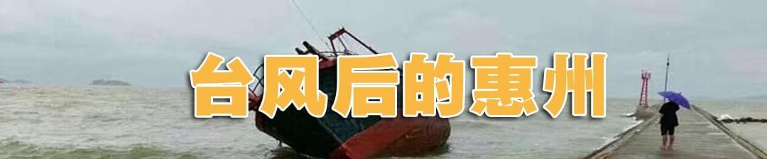 """台风""""苗柏""""给惠州带来了哪些影响?"""