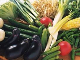 郴州调运蔬菜确保市场供应,菜价基本平稳
