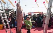 江苏海安举办冬季捕鱼节
