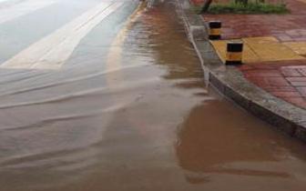 邯郸:路面积水数百米 行人树木都遭殃