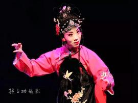 河津小梅花剧团参加运城戏曲大赛