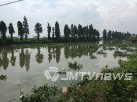 保护潭江水 江门在行动 已投入资金1500多万元