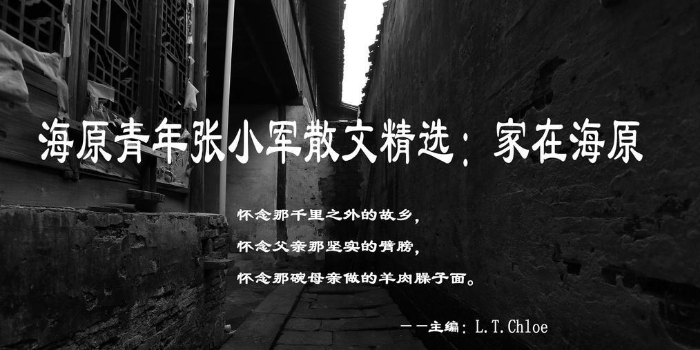 海原青年张小军散文精选:家在海原