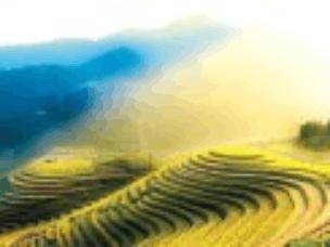 梯田只知道桂林的龙脊和云南的元阳?那真的太落后