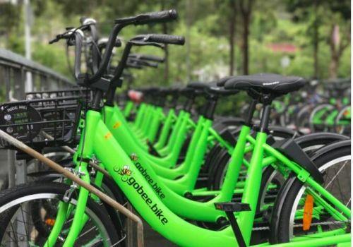 被盗损坏严重 香港共享单车Gobee bike无奈退出法国