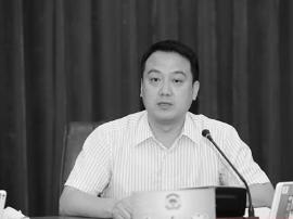 惠州上半年发展如何?副市长晒出7条成绩