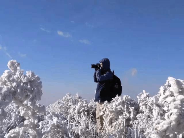 一场飘雪!广东完败北方!最美雾凇,不止一处...