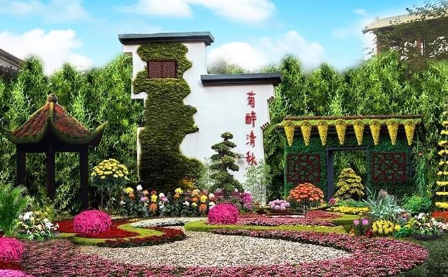 菊醉金秋  开封第六届国际菊花展即将盛大开幕