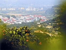 山东:省会城市群经济圈力推乡村旅游发展