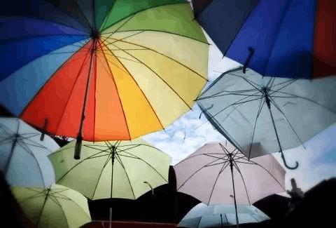 6月浙江人在1688上买了全国八成的雨伞 还有啥?