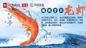 【直播】美女挑逗大龙虾!越南海鲜要这样吃