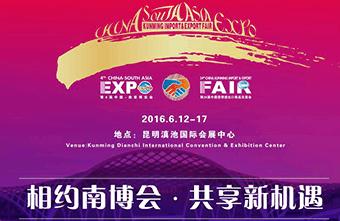 第4届中国—南亚博览会盛大开幕