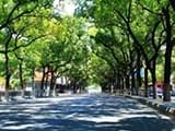 宁波已经下了10天雨 再熬两天就能重见阳光