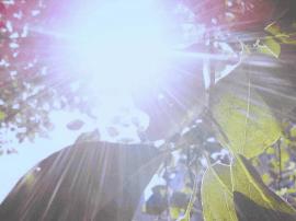 南宁进入夏季中最炎热时节 长时间吹空调易犯这种病