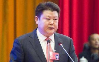秀山县长向业顺:狠抓落实 确保经济总量稳定上升