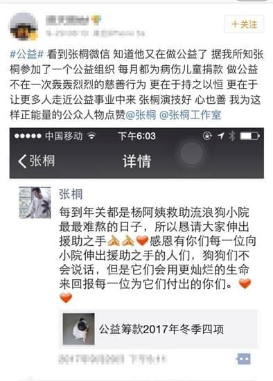 网曝张桐曾为病伤儿童捐款  获赞正能量人物