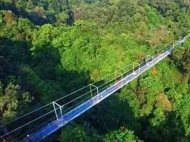 广西首座悬索玻璃桥建成!秒杀张家界玻璃桥