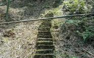 探寻隐匿百年的泸州叙永盐马古道