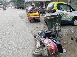 300kg母牛卸车时逃脱 狂奔1公里撞伤7岁男童