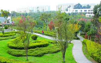昆明今年计划新增绿地370公顷 25条道路提升绿化