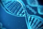 互联网让人们更多认知生命基因工程