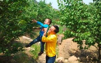 """淮阳路小学举行""""牵起爸妈的手 共建美丽家园""""活动"""